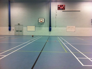 Birmingham Blackcats home court